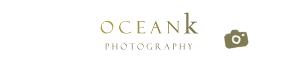 OceanK Photography 美好日日影像工作室 - 孕婦寫真 + 親子寫真